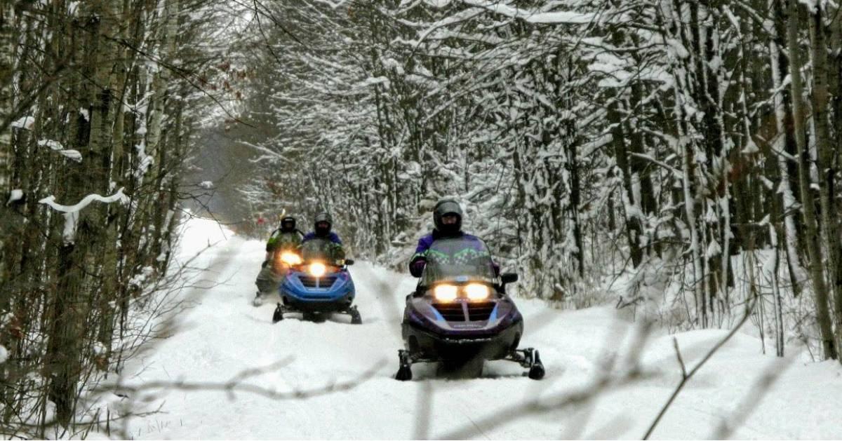 three snowmobilers