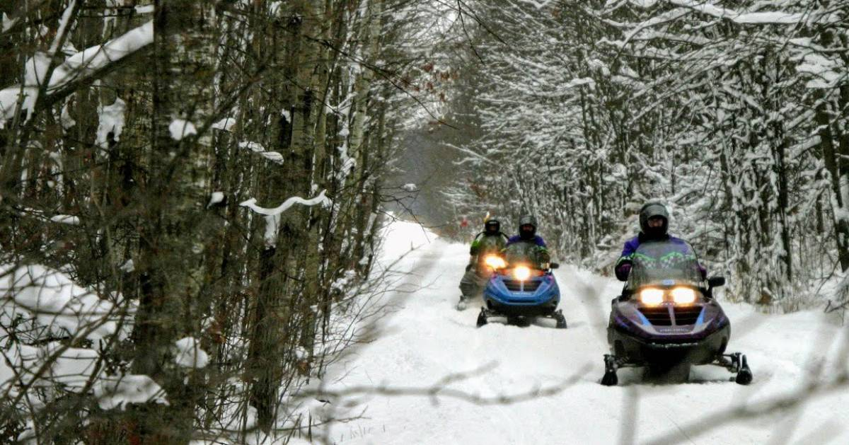 snowmobilers riding along a trail in the woods