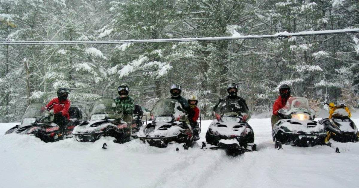 snowmobilers in the snow