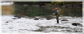 Find the best fishing spots in the adirondacks for Sacramento river fishing spots