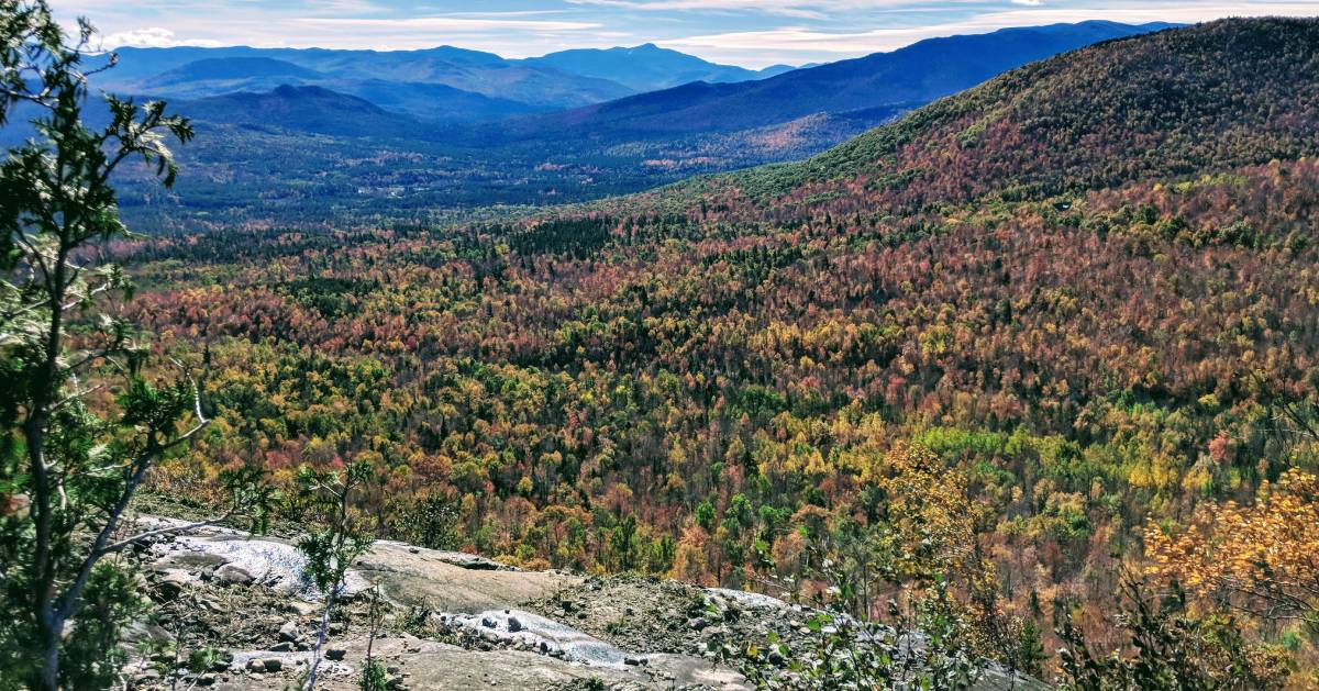 view from summit of fall foliage
