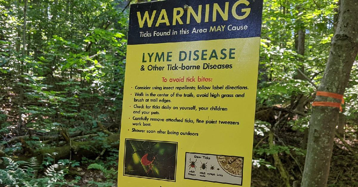 sign about ticks on hiking trail