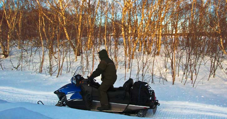 snowmobiler near trees and snow