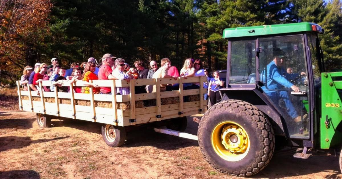 a wagon ride on a farm