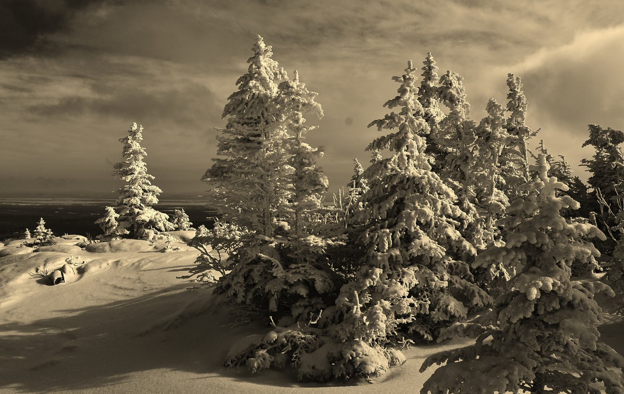 ADK Pic of the Week Scott Yakey: Winter Wonderland