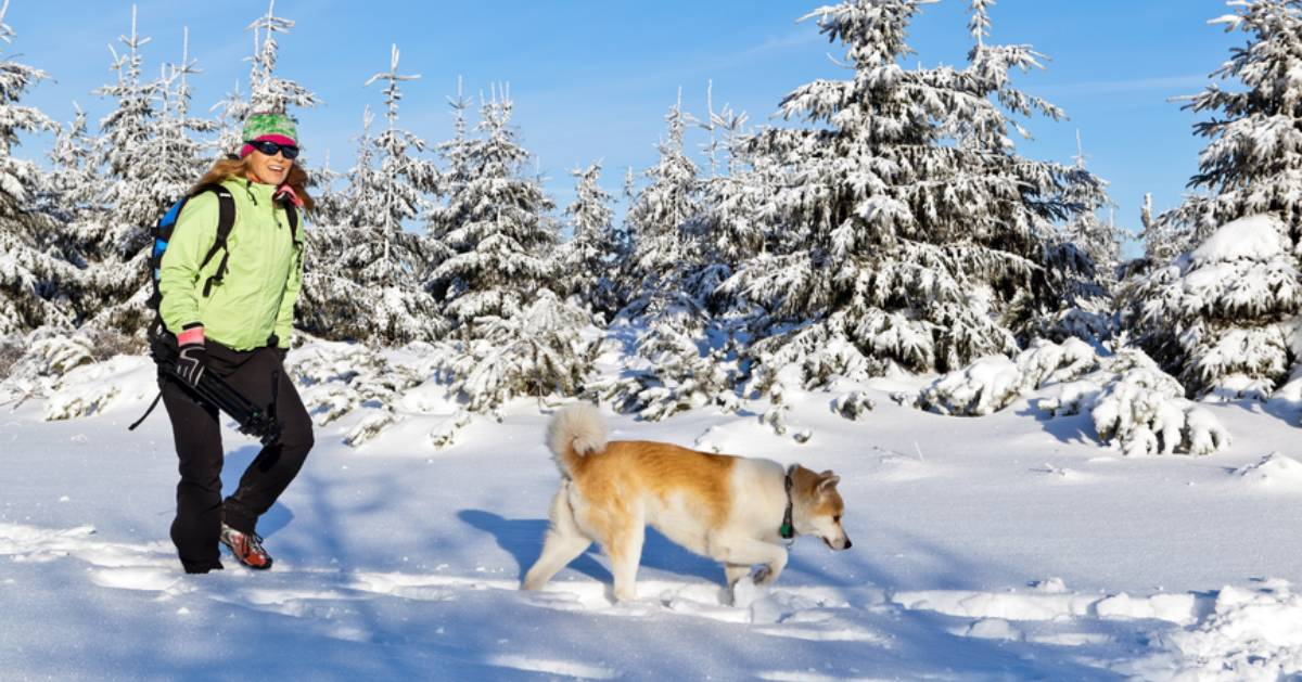a woman hiking in the winter with her dog