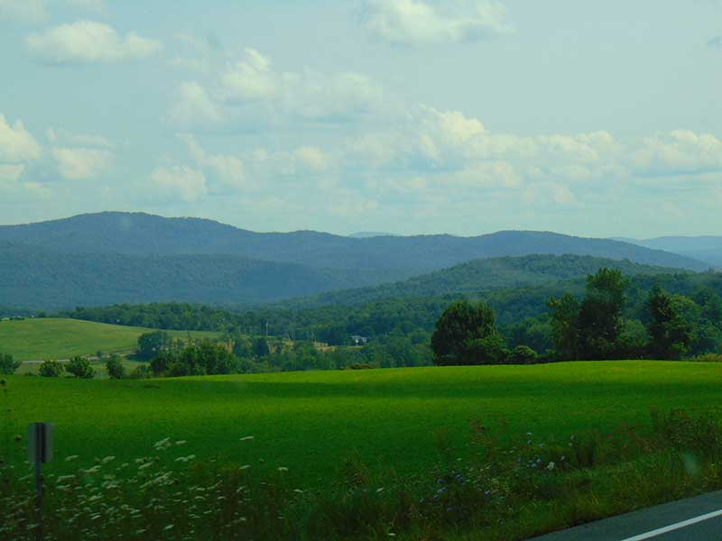 Lush green rolling hills in Jackson NY