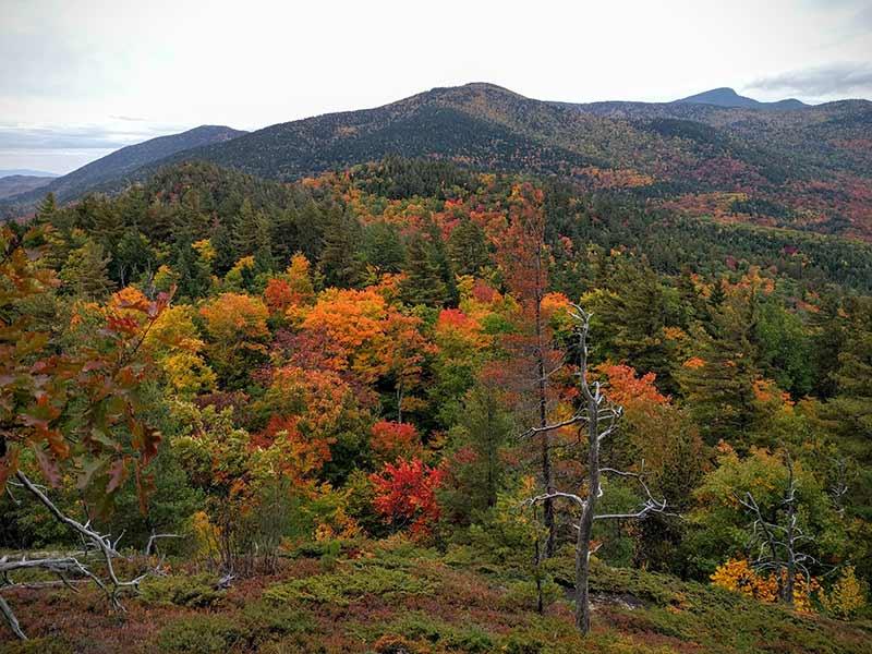 Fall Foliage at Baxter Mountain in Keene NY