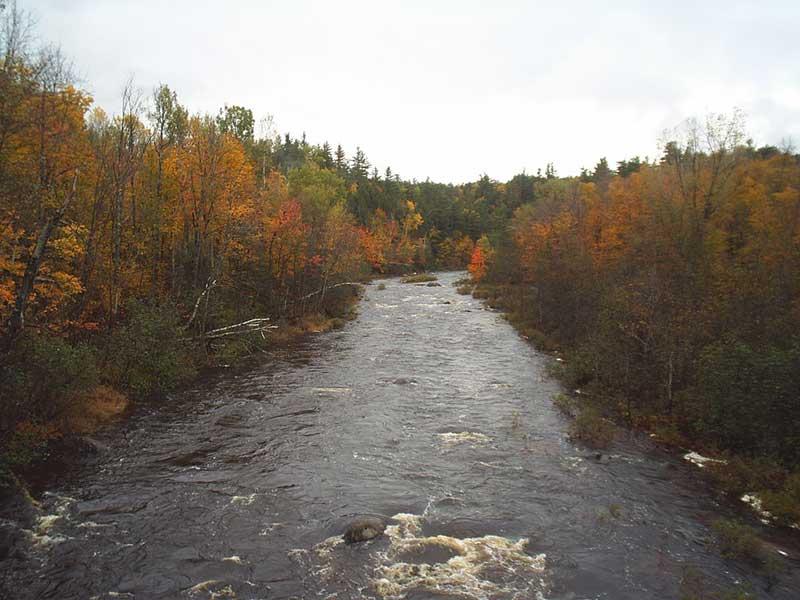 Fall foliage on the Saranac River near Schuyler Falls NY