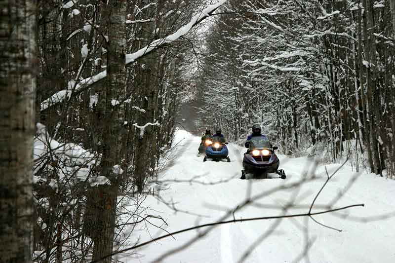 Snowmobilers riding a trail through a forest