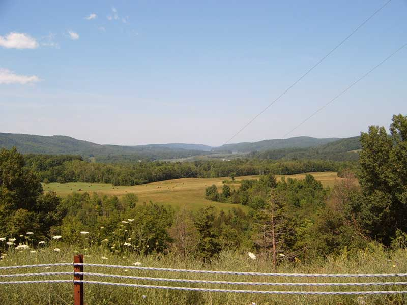 Overlooking hills and forest in Whitehall NY