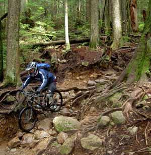 biker-300.jpg