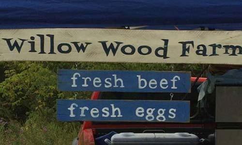 willow-wood1.jpg