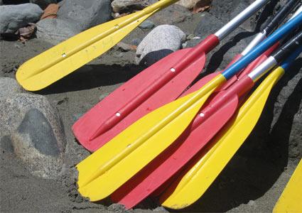 paddles.jpg