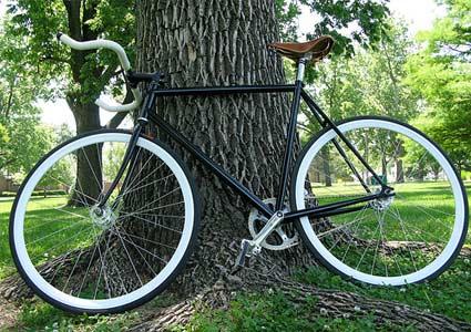 bike-tree.jpg