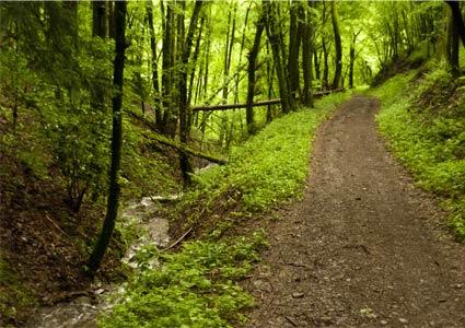 adirondack-route.jpg