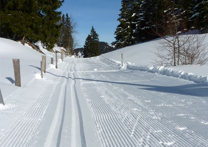 ski-tracks.jpg