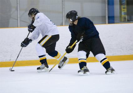 hockey-game.jpg