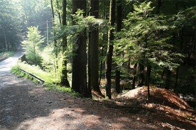 Int-Trail.jpg