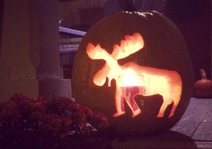 moose-jack-o-lantern.jpg