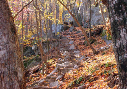 poke-o-moonshine-mountain-trail.jpg