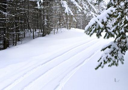 snowmobile-trail.jpg