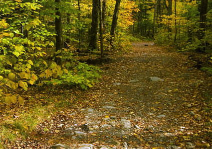 trail-for-recreation-fall.jpg