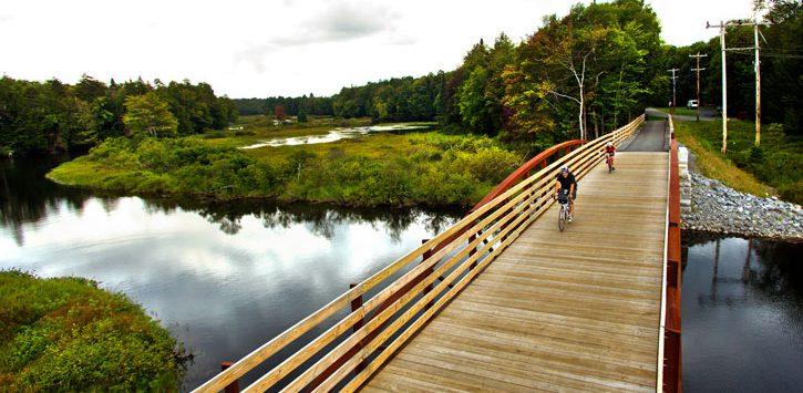 biking over a bridge in the woods