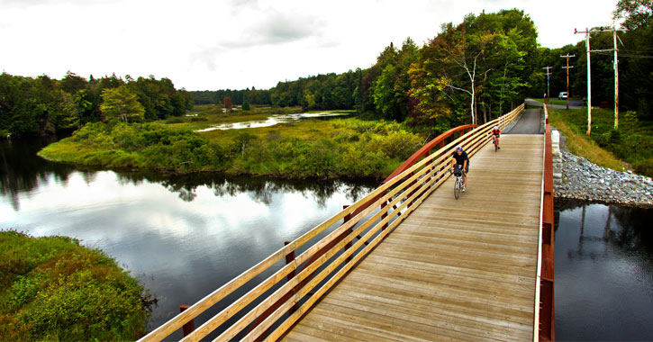 biking over a bridge in the woods