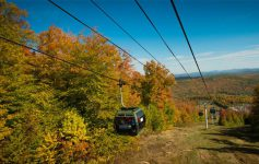 a gondola going down a mountain with fall foliage