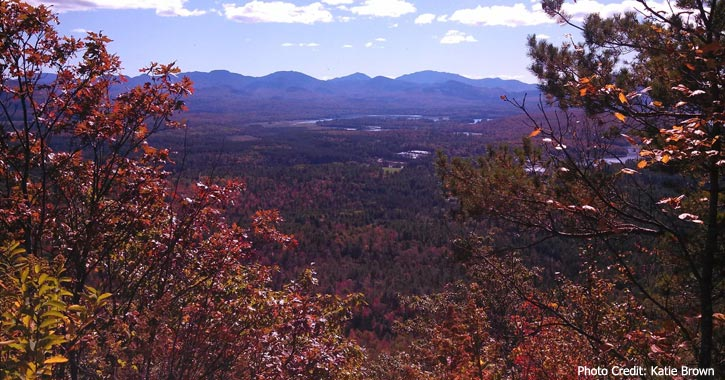 fall foliage view from Baker Mountain