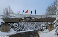 lake placid olympic center bridge