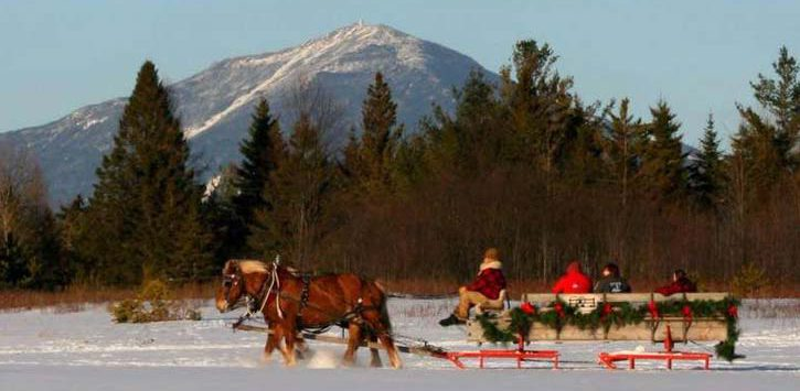 sleigh ride mountain snow