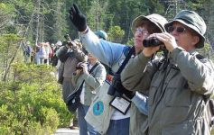a group of birdwatchers