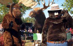 moose festival characters