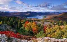 colorful fall foliage at mountains