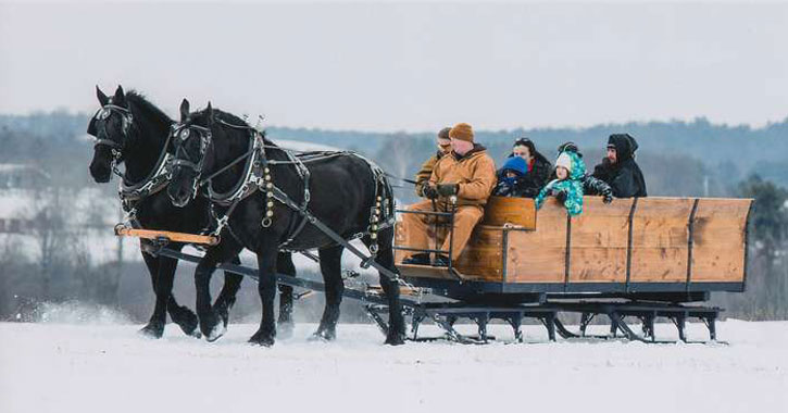 horse drawn wagon ride