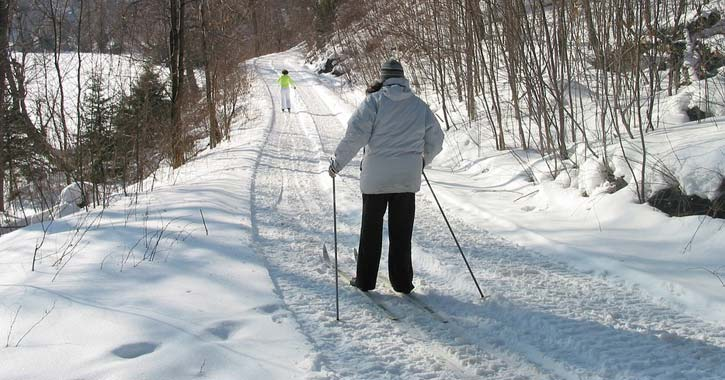 person cross-country skiing in the woods