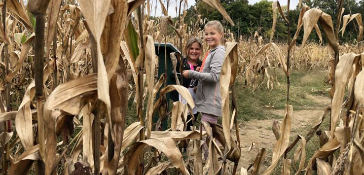 kids in corn field