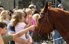 children petting a horse at fort ticonderoga