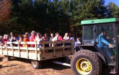 wagon ride at a farm in thurman