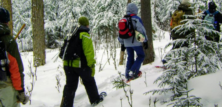 hikers in the woods in the winter
