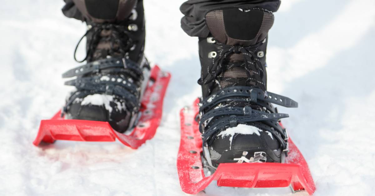 close up of red snow shoes