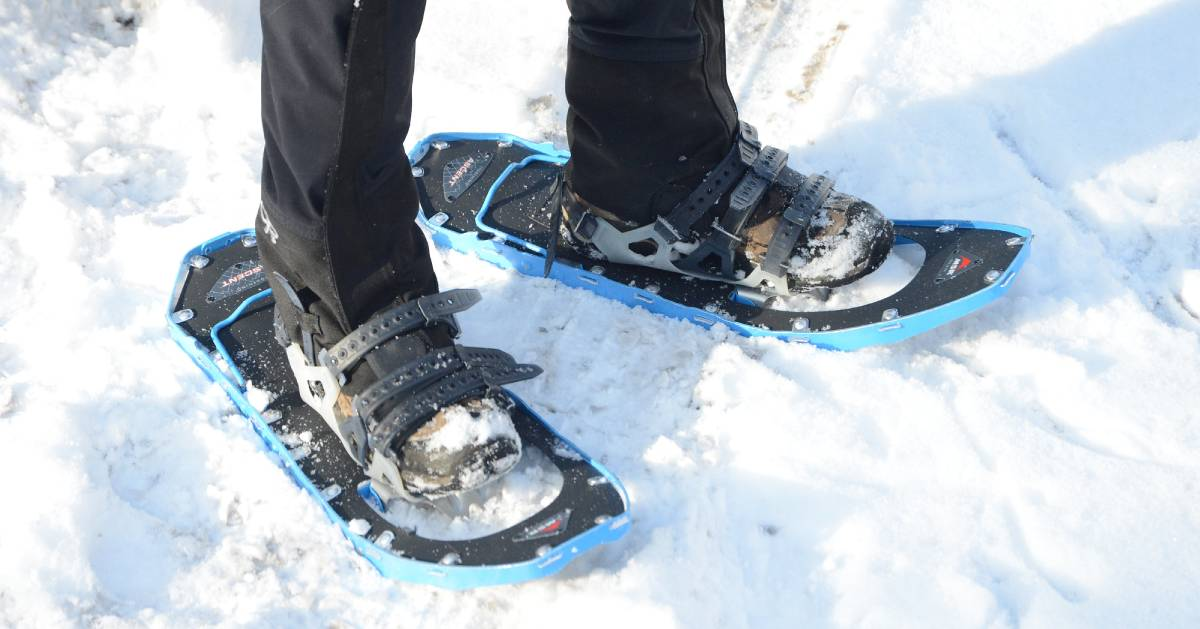 two snowshoes