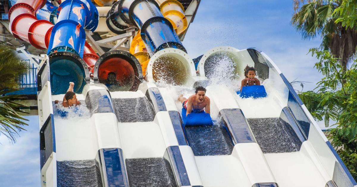 people on massive water slide