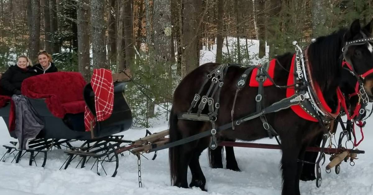 two people on a sleigh ride