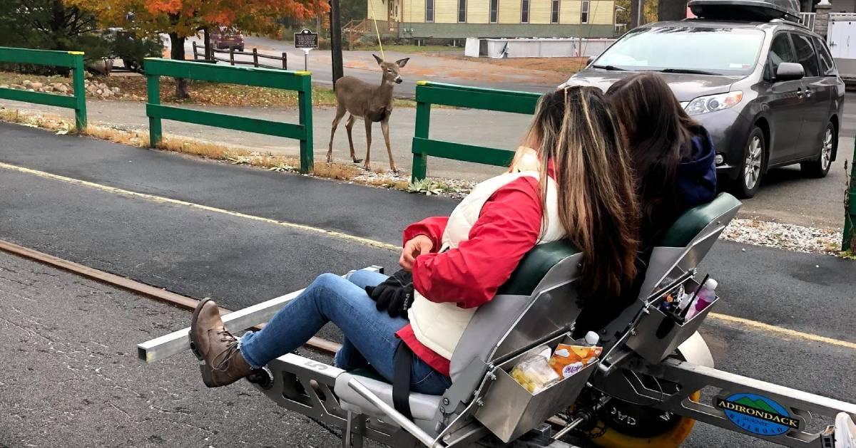 rail biking ladies and deer