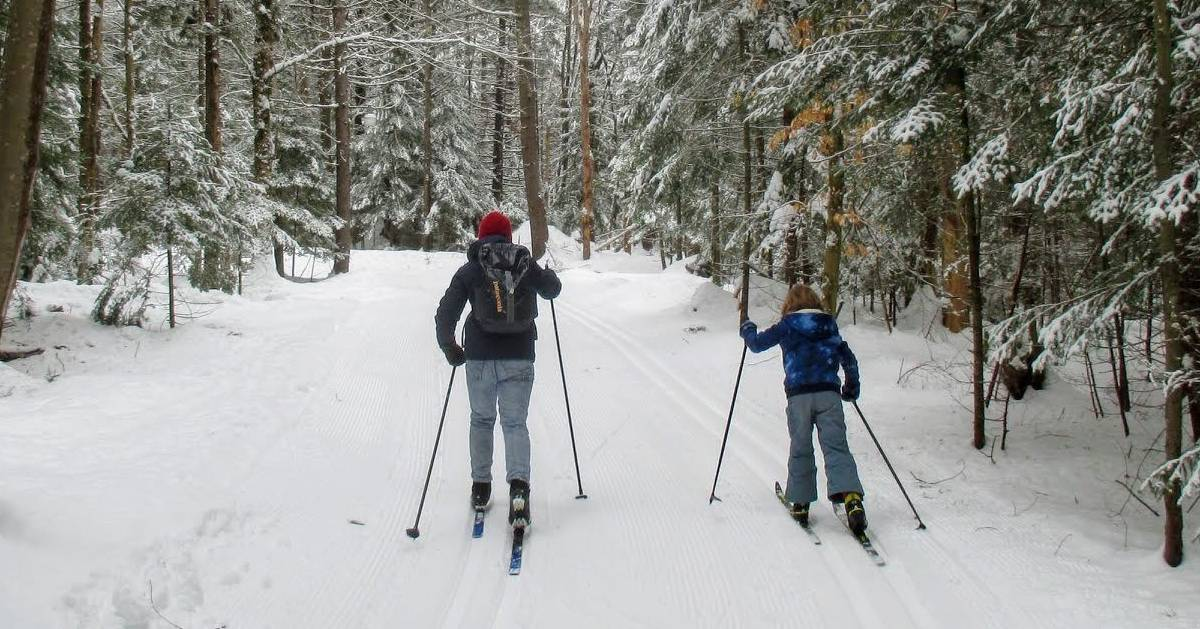 two cross-country skiers on a groomed ski trail