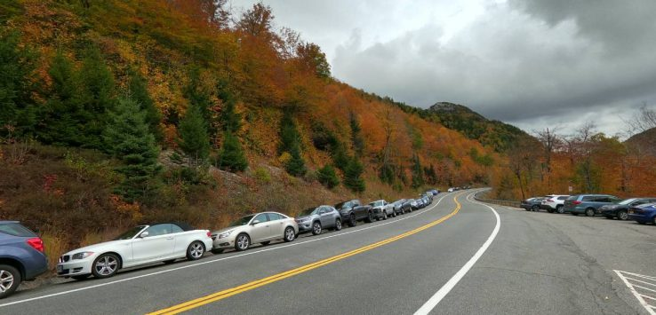 cars along a road in the fall