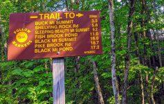 Buck Mountain trailhead sign